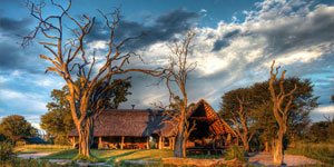 Bomani Lodge Accommodation in Hwange National Park