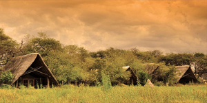 The Hide Camp in Hwange National Park