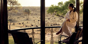 Stanley and Livingstone Safari Lodge in Victoria Falls