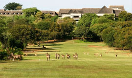 Golf Course at Elephant Hills
